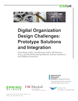 Digital Organization Design Challenges: Prototype Solutions and Integration